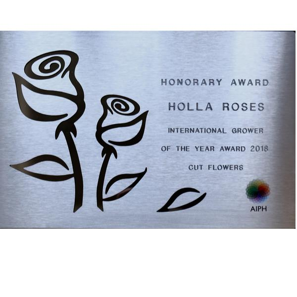HONORARY AWARD -